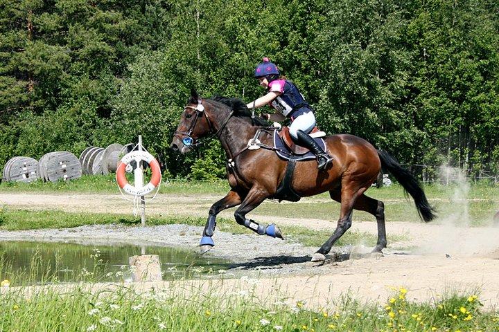 goldman_vannhinder_feltrittstevne2011